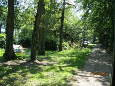 """Camping de """"La Forêt"""""""