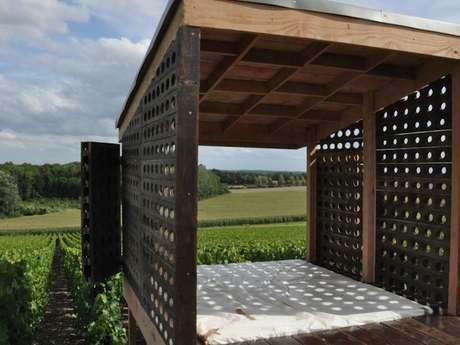 Loge de vigne - Le lit de vignes