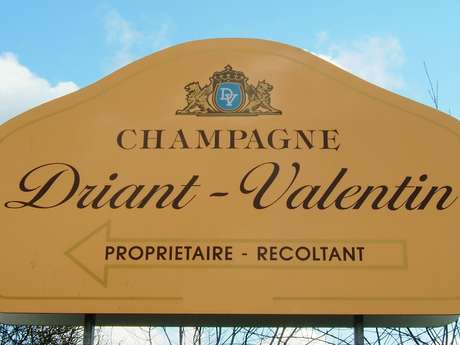 Champagne Driant-Valentin