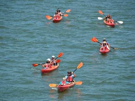 Escapades : Sortie en kayak au Lac du Der