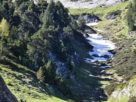 TOUR DES VILLAGES 20 KM PATOU TRAIL