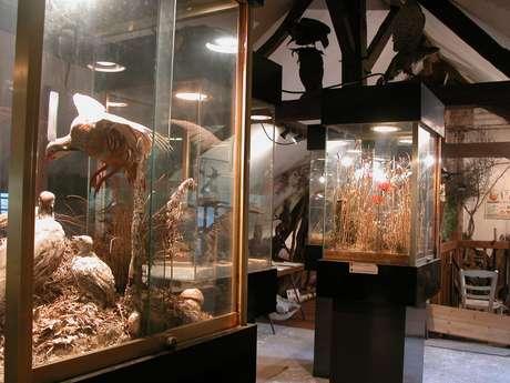 PETIT MUSEE DE LA FAUNE LOCALE