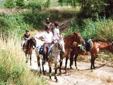 Les Chemins de Nouka