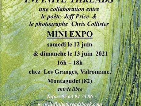 "Mini exposition ""Les Fils Infinis / Infinite Threads"""