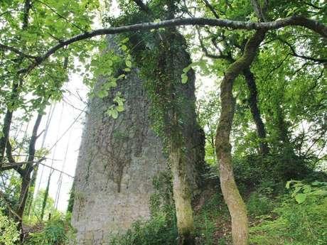 Point de vue des ruines de Montdidier