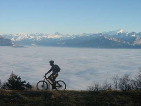 Mountain biking descent and enduro loops on Le Salève