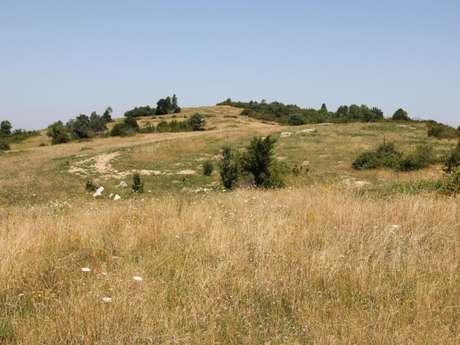 Plateau d'Arnans