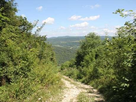 Mont Nivigne
