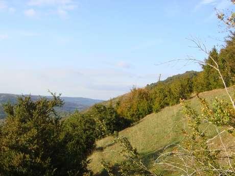 Mont Châtel