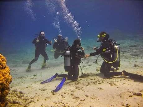 Plongée sous-marine  encadrée - La Foa Plongée