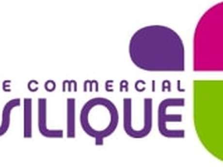 Centre commercial Basilique