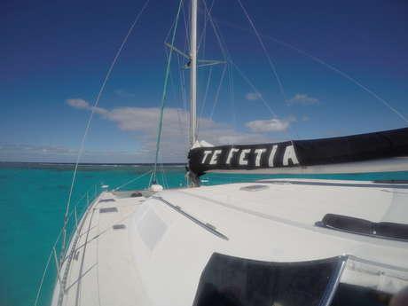 Sortie sunset en catamaran - Te Fetia Charter
