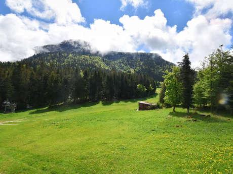 Balade accompagnée : Le Col de Porte, terrain de jeu des Grenoblois