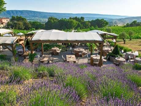 Les Vignes & son Jardin dans les Vignes