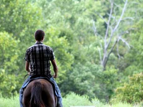 Equitation - ados/adultes