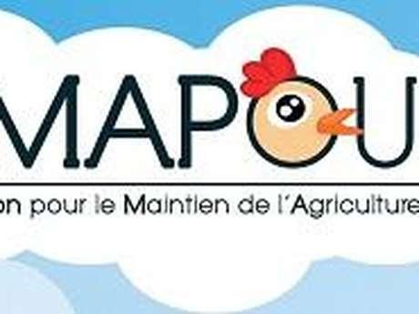 Amapoule