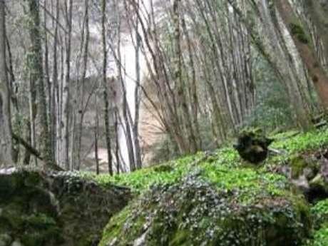 Le furet waterfall