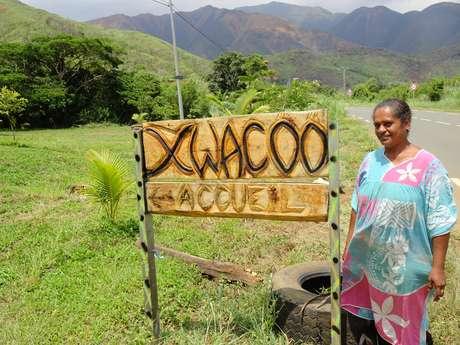 Accueil en tribu Xwacöö