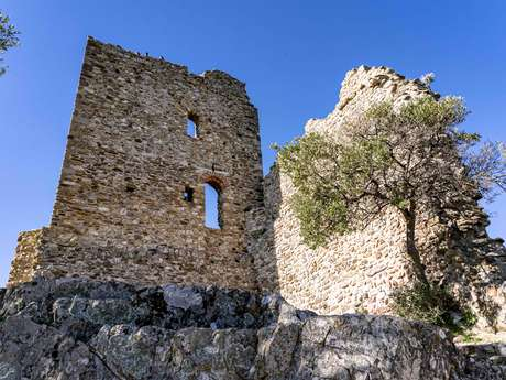 """Guided tour """"Discovering the village and its heritage sites"""""""