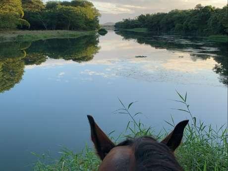 Randonnée équestre 1/2 journée à Taïchen - La Foa Randonnées
