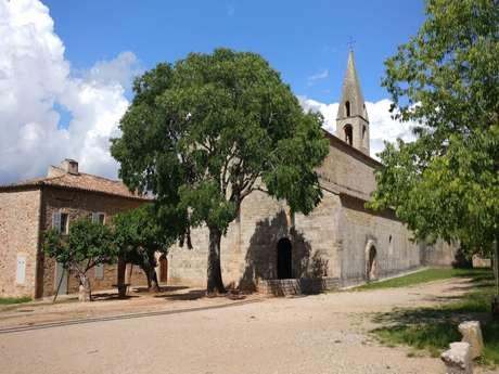 Du village médiéval de Roquebrune à l'abbaye du Thoronet