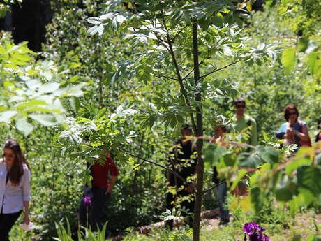 Jardin pédagogique des plantes culinaires et médicinales de Chartreuse