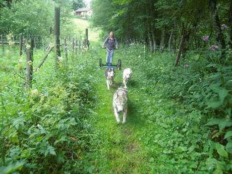 Initiation au mushing dans la vallée du Haut Bréda