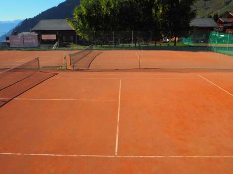 Leisure Park tennis court