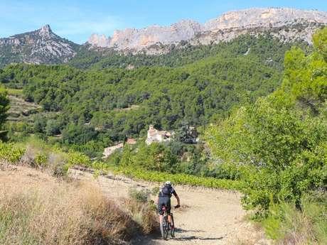 Sur les traces du Roc d'Azur