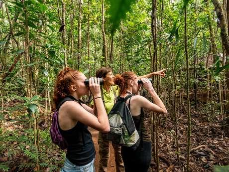 Découverte des oiseaux au Parc Provincial de la Rivière Bleue - Caledonia Birds