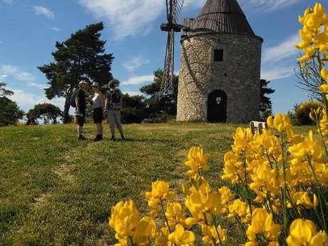 Rando découverte : Les moulins de Montfuron