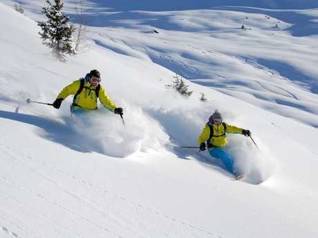 Group or private heliskiing with Adrenaline