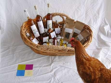 Ateliers découverte et utilisation des huiles essentielles