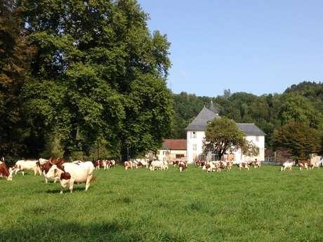 Gîte de groupe et d'étape - Domaine de Grand Villette - Le Chalet