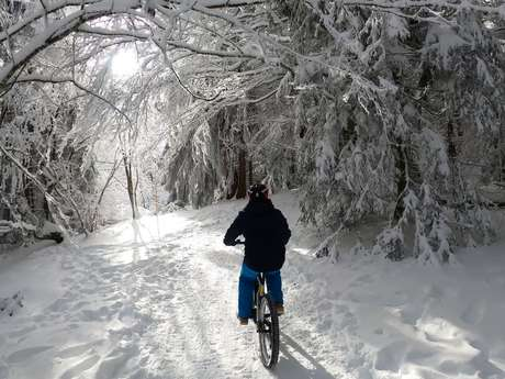 Le Salève en Fatbike sur neige