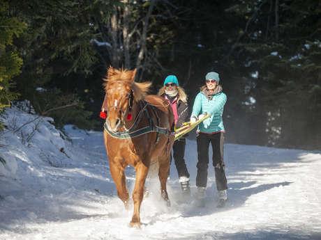 Ski Joëring Chabanon