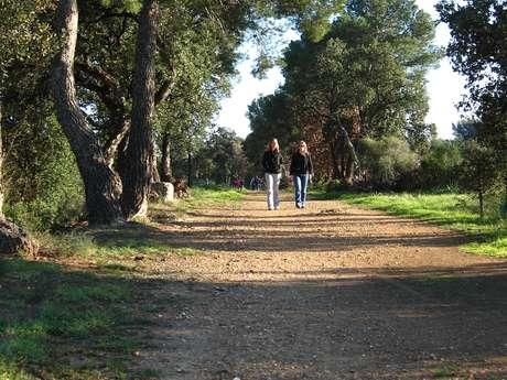 La promenade de la Garenne