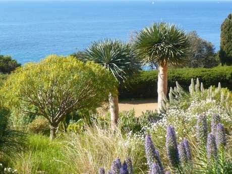 Domaine du Rayol, Le Jardin des Méditerranées