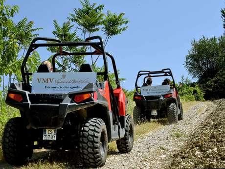 Excursion buggy à la cave des Vignerons du Mont Ventoux