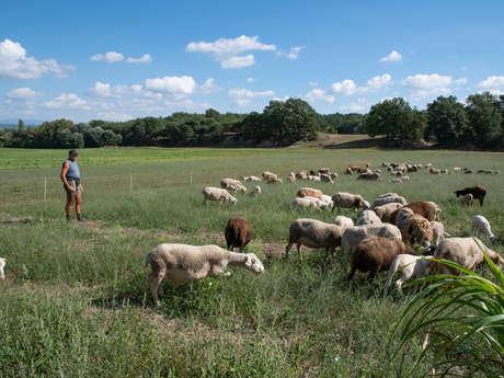 A la ferme - Séjours en Gîtes de France