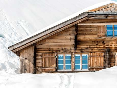 The Verbier Collection