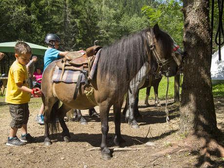 Cavalcate in pony