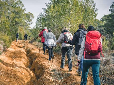 Marche Nordique avec Airfit Provence