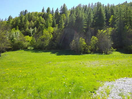 Camping municipal Le Freyssinet