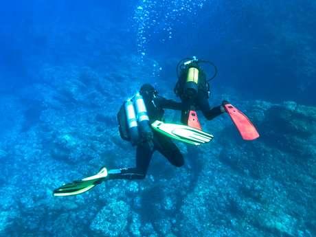 Découverte : Baptême de plongée - Lecques Aquanaut
