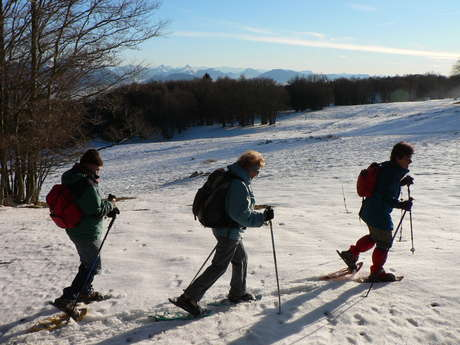 Incentives - Snowshoe hiking