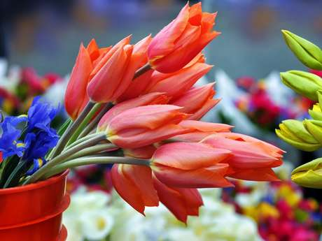 Marché aux fleurs Estrangin
