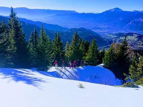 randonnée en raquettes A la découverte des alpages enneigés
