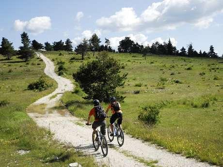 Chemins du Soleil - De Tartonne à Saint-André-les-Alpes - Le Haut Verdon à VTT (A17)