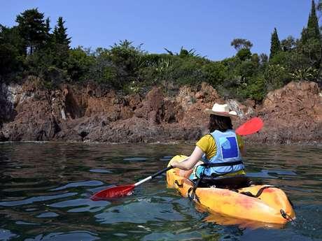 Balade nature en kayak
